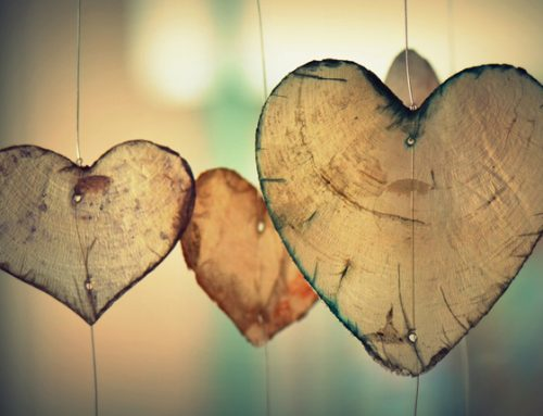 NEW PERSPECTIVES ON LOVE