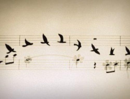 This Summer's Music at Chingford Parish